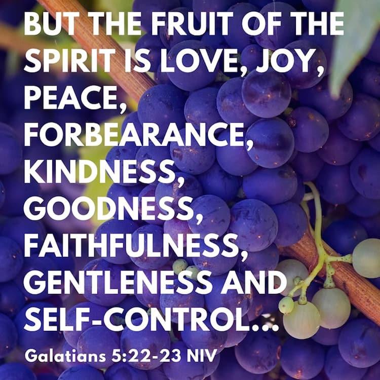 Galatians 5-22-23 NIV